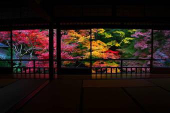 京都観光でオススメな紅葉スポットを20箇所ありったけ